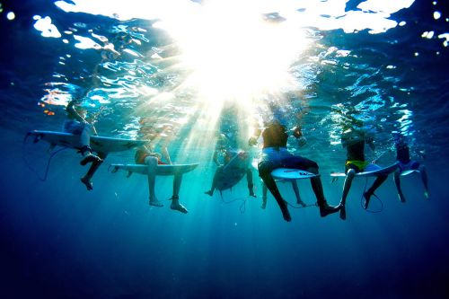 Dive in With Photographer Morgan Maassen