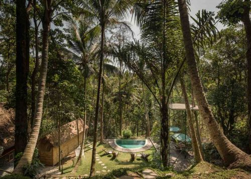 A Treehouse Hotel in Paradise