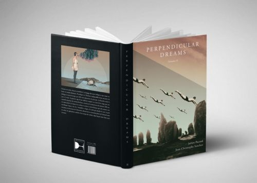 Beautiful Illustration Book about Travelling by Julien Pacaud